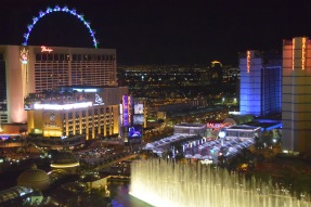 View from the Bellagio