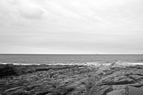 Black + white rocks